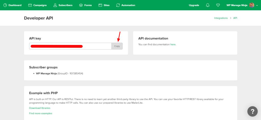 Mailerlite Copy API Key Fluent Forms