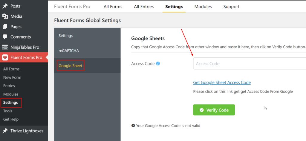 Google Sheet Access Code WP Fluent Forms