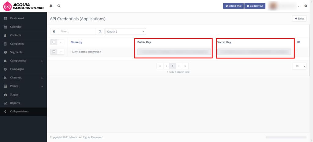 Mautic get API Fluent Forms