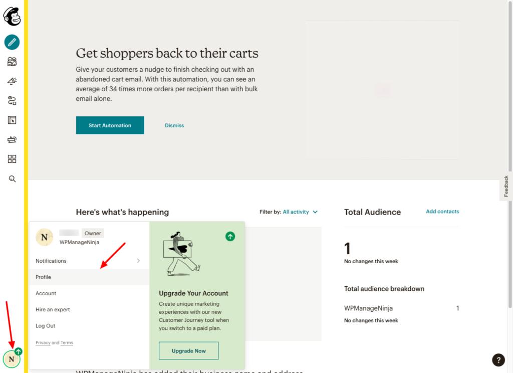 Mailchimp Integration - Profile - Fluent Forms