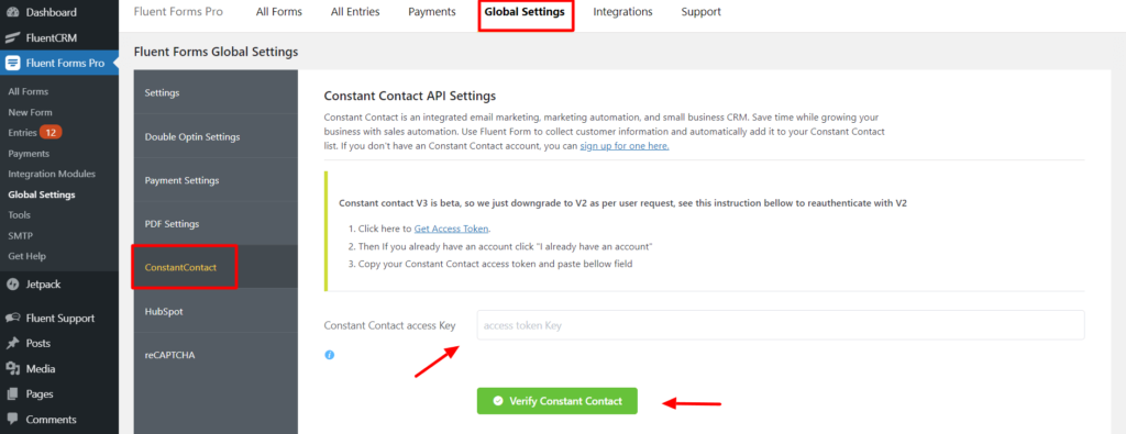 Fluent forms Constant Contact access key